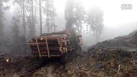 青州重越--履带式木材运输车工作现场 (827播放)