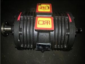 威龙真空泵50QZXDG-30/400吸污泵