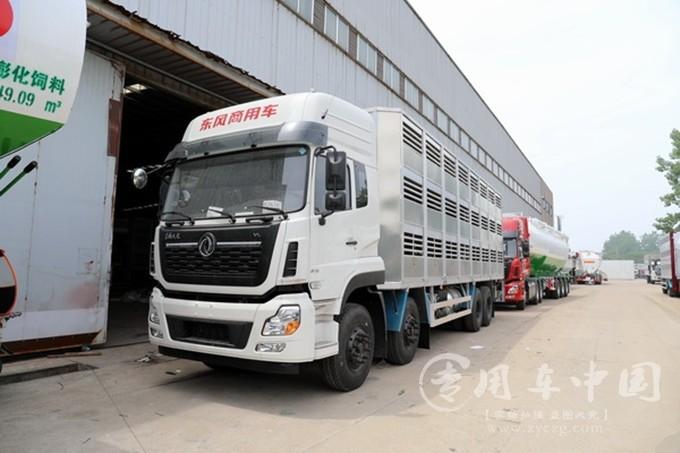 养殖专业户的福利,东风天龙前四后八畜禽运输车动态