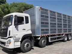 东风天龙9米6拉猪车