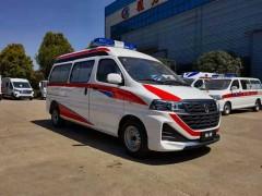 程力新款金杯海狮转运型救护车展示